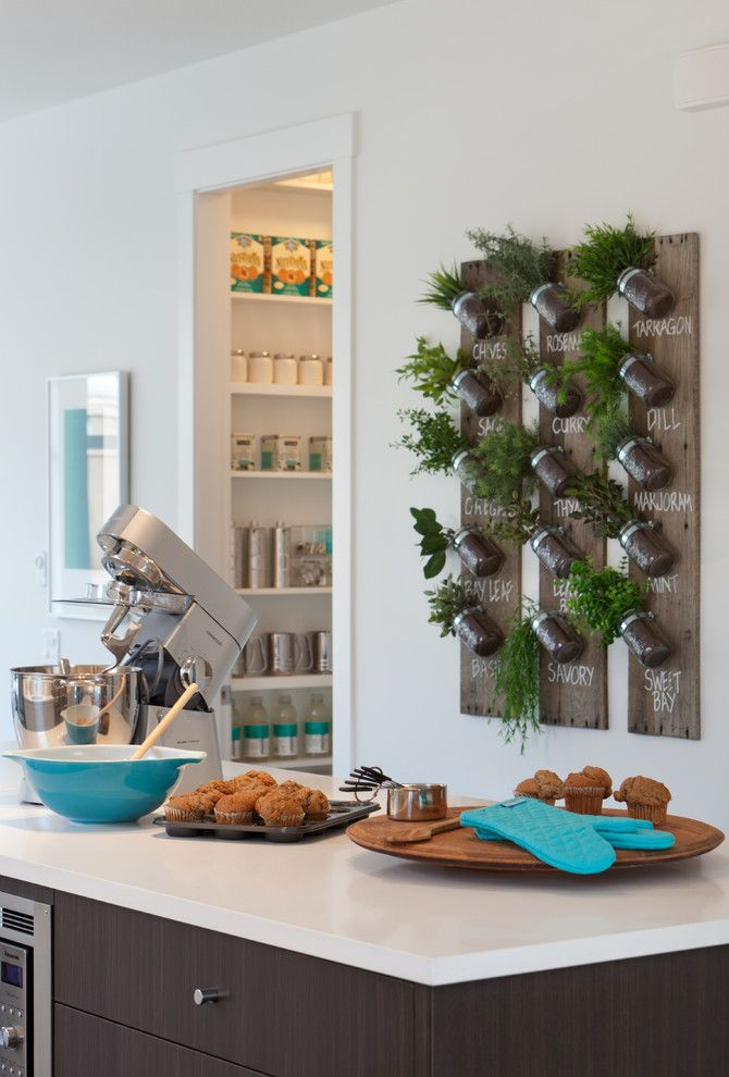 How to Get Rid of Moths in Pantry for a Contemporary Kitchen with a Wood and Roxton by Portico Design Group
