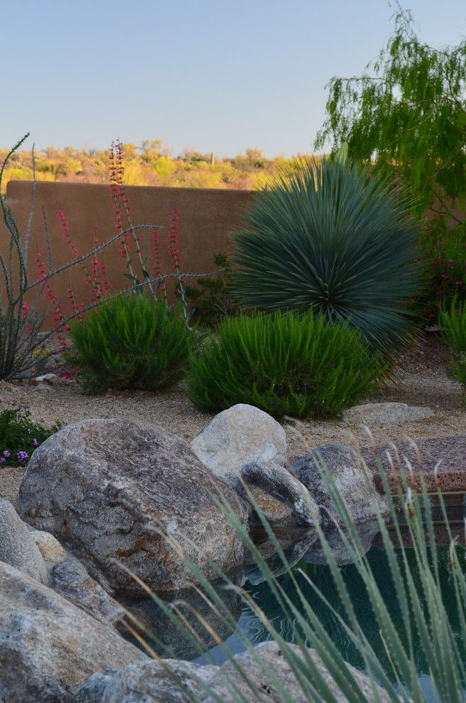 Hummingbird Habitat for a Southwestern Landscape with a Landscape Design and CAMINO ARIZONA by Landscape Design West, LLC