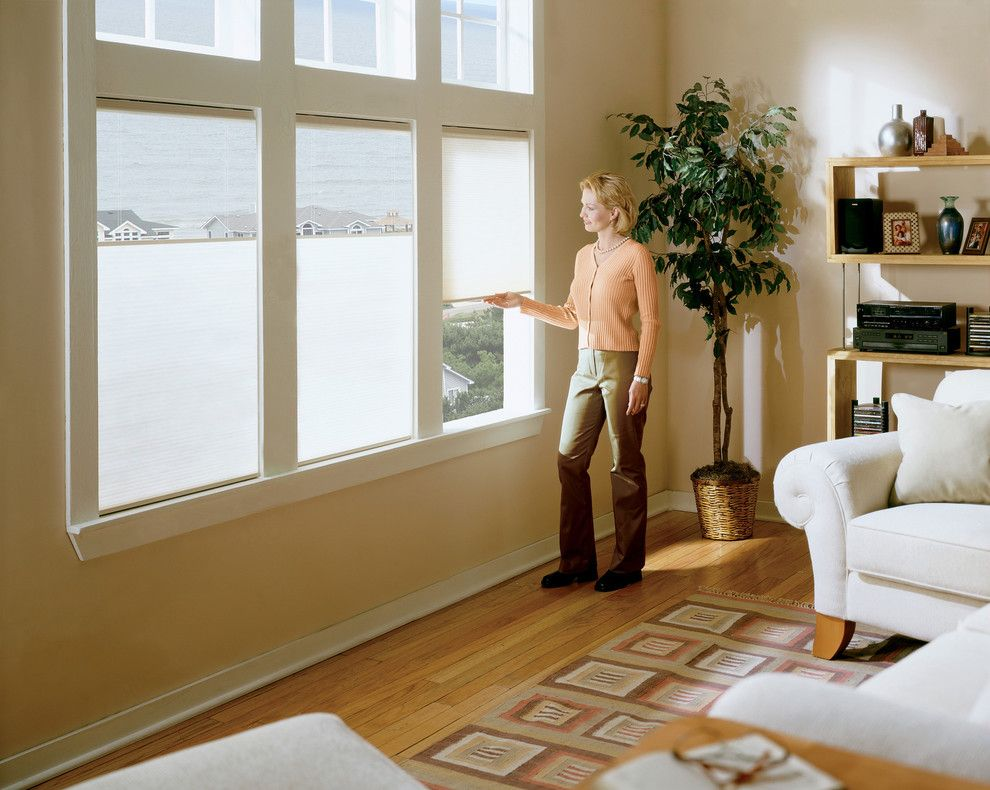 Hunterfan.com for a Contemporary Living Room with a Light Filtering and Cordless Top Down Bottom Up Shades (Duofold) by Cellularwindowshades.com