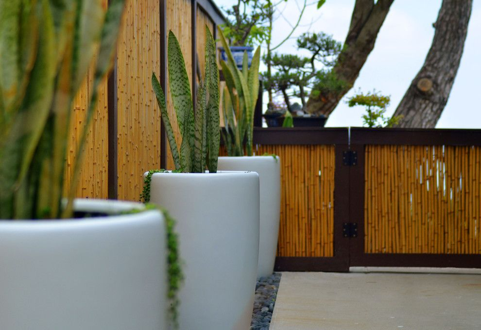 Ikea Planters for a Asian Landscape with a Asian and 5609 Residence by Jesse Im/bugonmyleaf