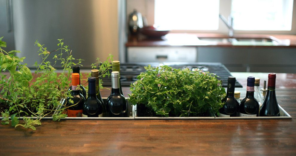 Ikea Planters for a Contemporary Kitchen with a Kitchen Island and Planter Detail by Bonfigli Design