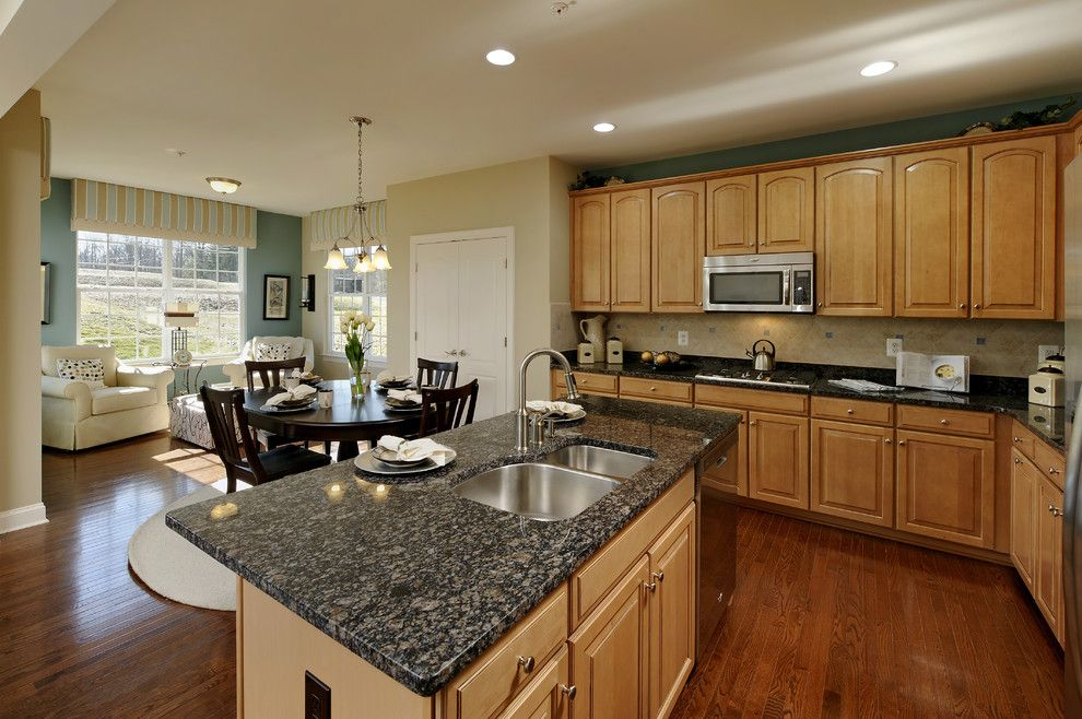 Imax Accessories for a Contemporary Kitchen with a Contemporary and Brighton Place   Jefferson and Chandler Models by Beazer Homes   Maryland/virginia