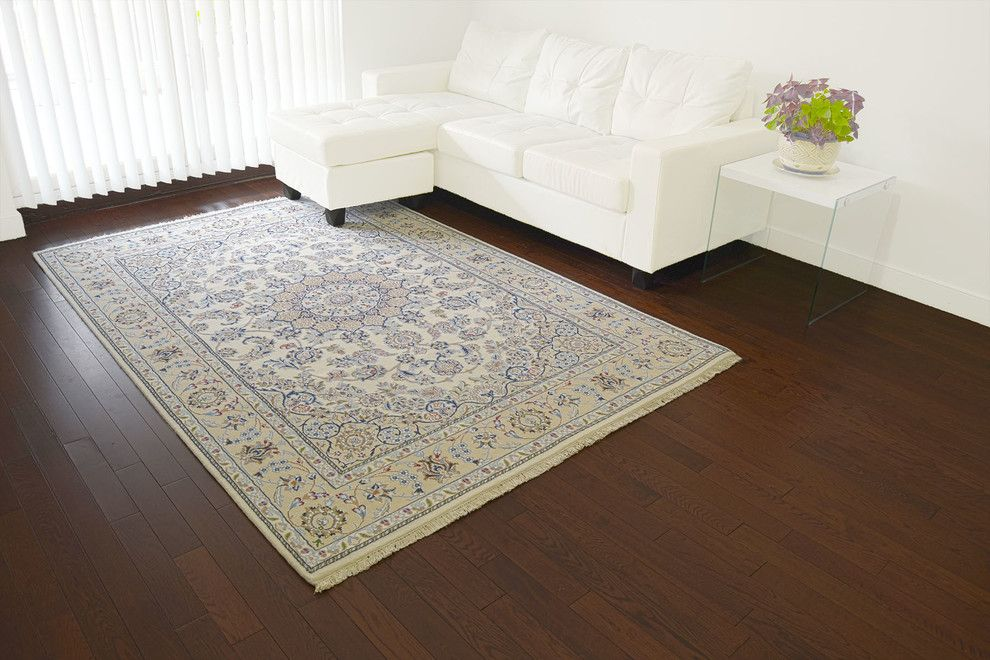 Issaquah Glass for a Contemporary Living Room with a Glass Side Table and Collections by 1800 Get a Rug
