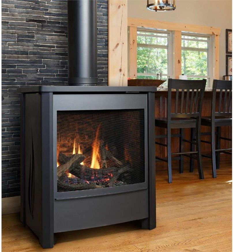 Kingsman Fireplace for a  Living Room with a Fireplace Ideas and Kingsman Millivolt Free Standing Direct Vent Gas Stove in Charcoal by Homeclick