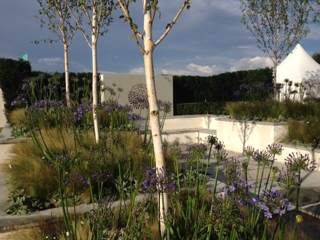 Lanier Tech College for a Contemporary Landscape with a Grasses and Silver Gilt for Bali Show Garden at the 2014 Rhs Flower Show Tatton Park by British Association of Landscape Industries