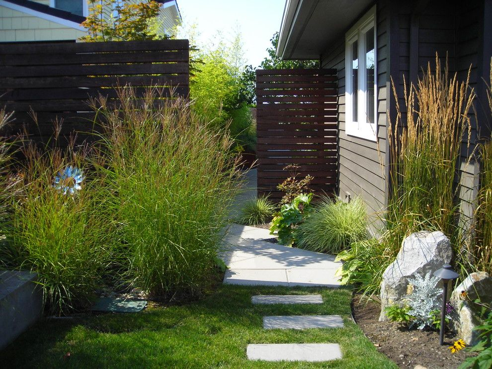 Lencioni for a Contemporary Landscape with a Karl Forester Grass and West Seattle Courtyard by Greener Living Solutions, Inc