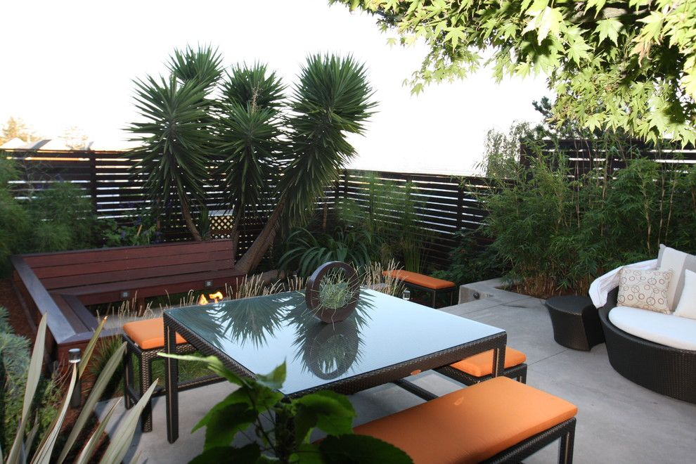 Lencioni for a Modern Patio with a Outdoor Dining and Potreo Hill Modern by Outer Space Landscape Architecture