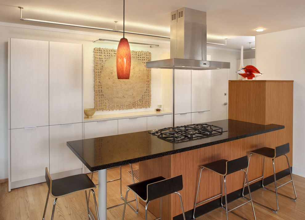 Lightolier for a Modern Kitchen with a Building Design and Amy Alper by Amy A. Alper, Architect