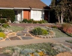 Longview Lawn and Garden for a Contemporary Landscape with a Front Yard and Lawn Alternative by Gregory Davis & Associates