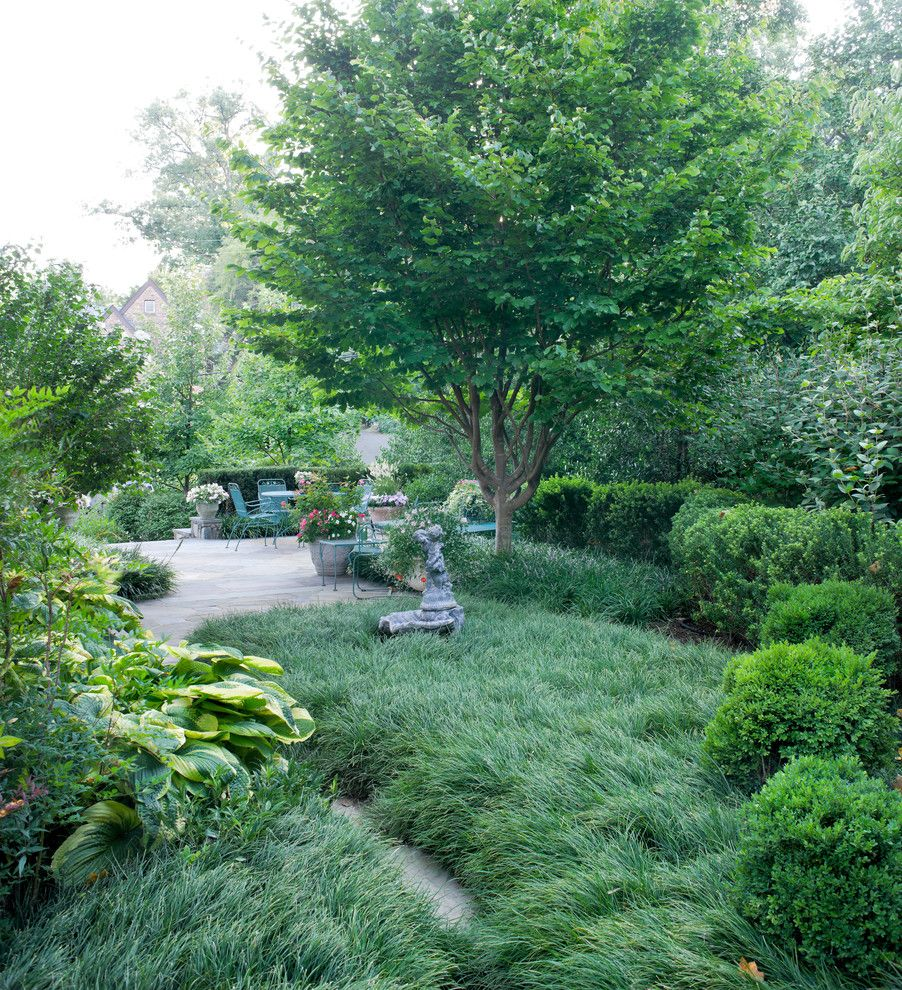 Lowes Bangor Maine for a Traditional Landscape with a Mondo Grass and Northern Arlington Residence by Scott Brinitzer Design Associates