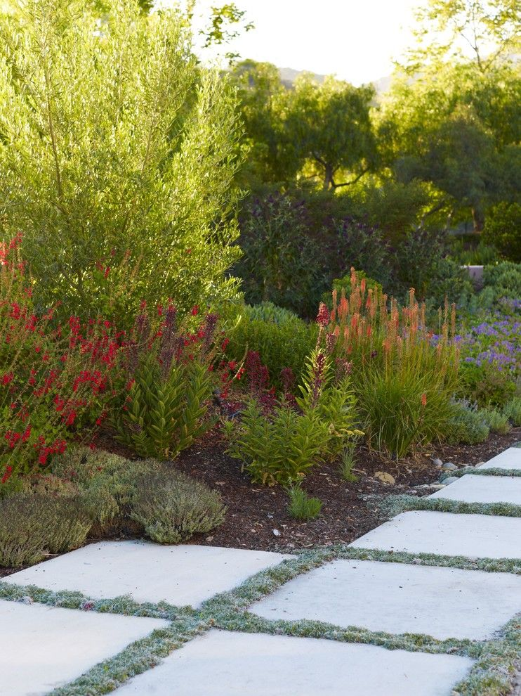 Lowes Huber Heights for a Mediterranean Landscape with a California and Avila Valley Estate by Jeffrey Gordon Smith Landscape Architecture