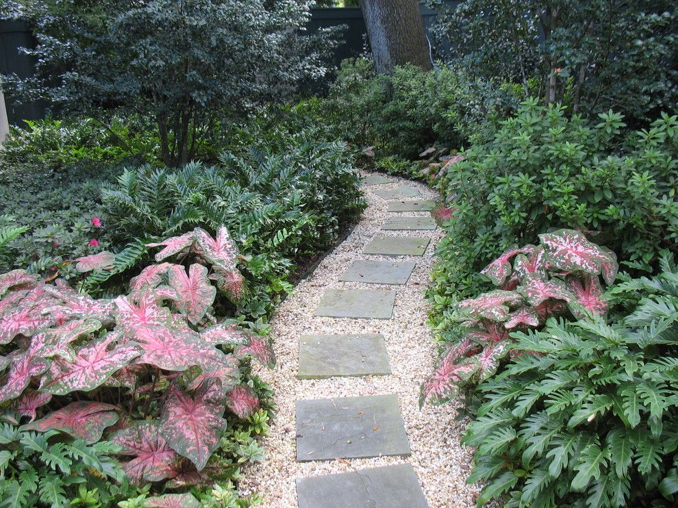 Lowes New Orleans for a Traditional Landscape with a Traditional and Private Gardens in New Orleans by Peter Raarup Landscape Design