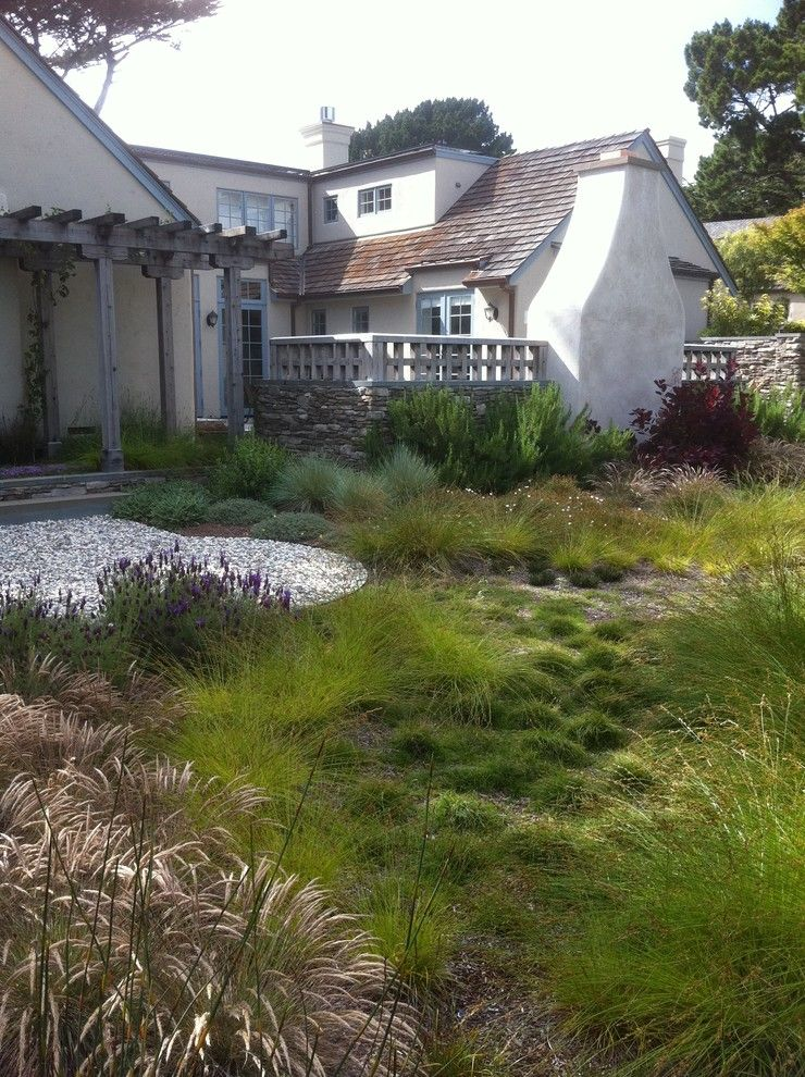 Lowes Palmdale Ca for a Mediterranean Landscape with a Grasses and Robert Shuler Design by Robert Shuler Design