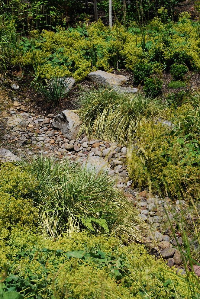 Lowes Yuba City for a Contemporary Landscape with a Contemporary and Decorative Stormwater Swale by Samuel H. Williamson Associates