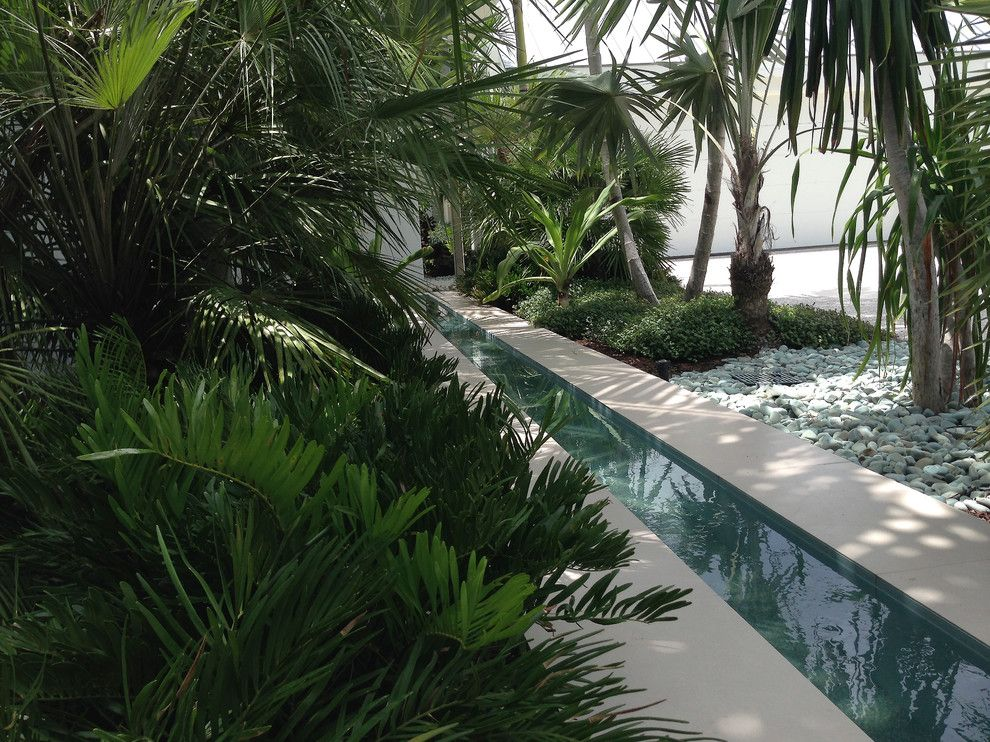 Loxahatchee Club for a Contemporary Landscape with a Contemporary and Residence at Loxahatchee Club, Jupiter, Florida by Blakely and Associates Landscape Architects, Inc.