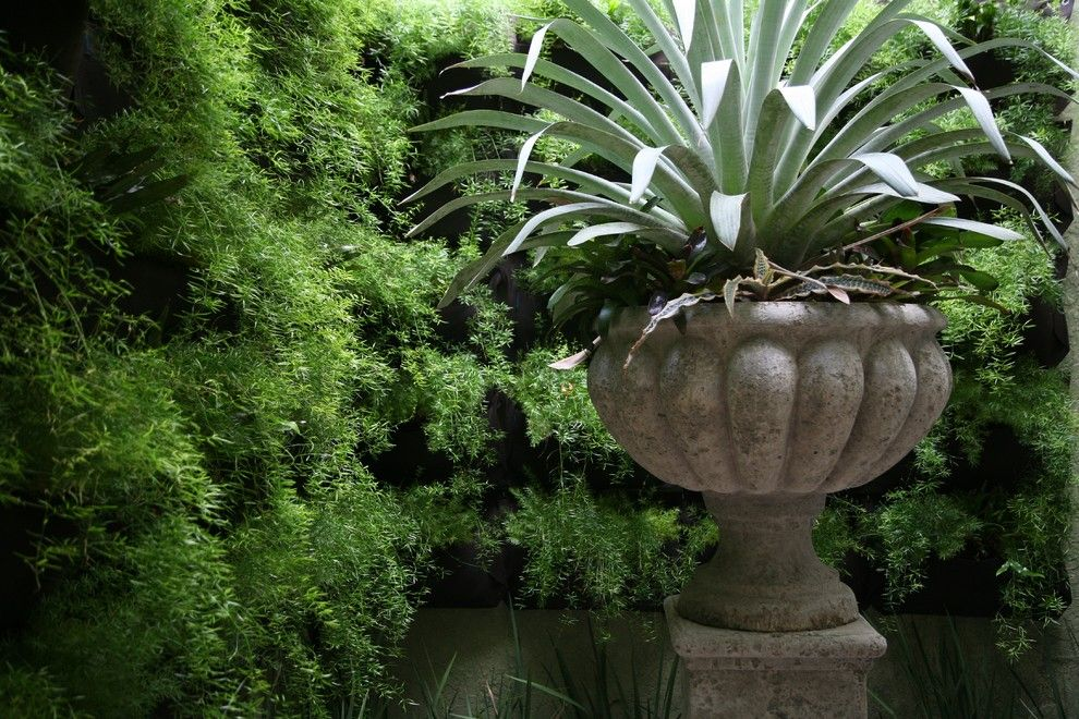 Loxahatchee Club for a Eclectic Landscape with a Bromeliads and Private Residence, Loxahatchee Club by Studio Sprout