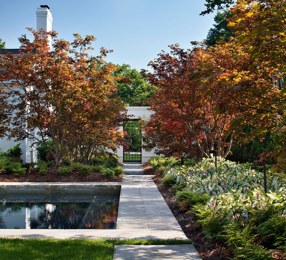 Maple Lawn Md for a Transitional Landscape with a Landscape and North Louisiana Pool and Cabana by Chipper Hatter Architectural Photographer