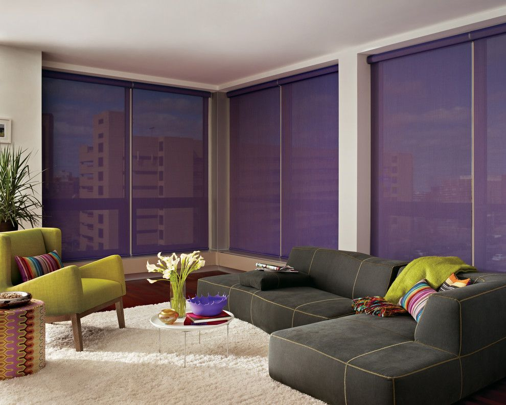 Mechoshade for a Contemporary Living Room with a Lightfiltering and Home Automation & Motorization by Blinds & Designs