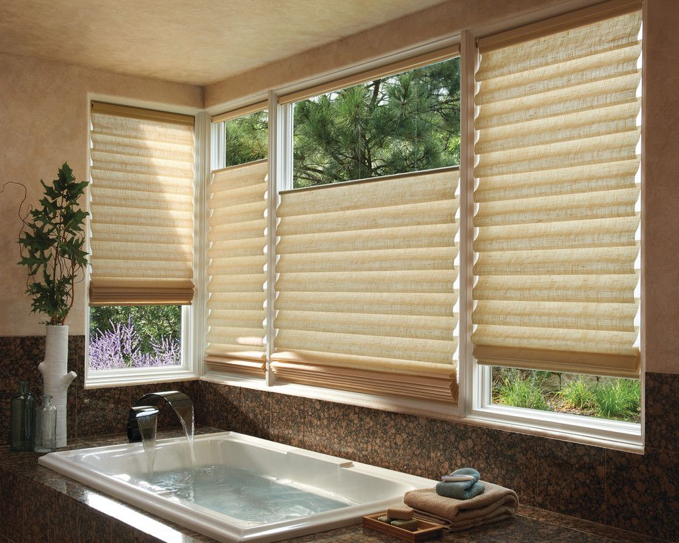 Mechoshade for a Transitional Bathroom with a Screenshade and Home Automation & Motorization by Blinds & Designs