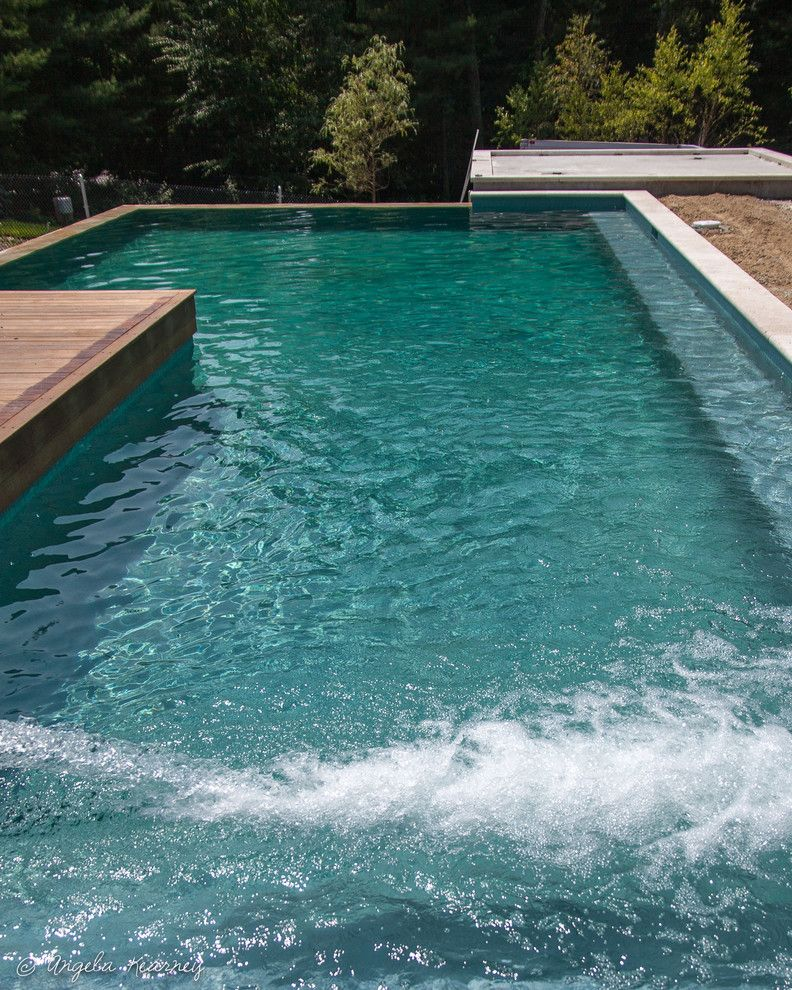 Minglewood for a Contemporary Pool with a Brownstone and Sanderson Knoll by Minglewood
