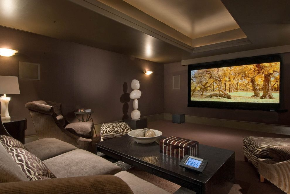 Murfreesboro Movie Theater for a Contemporary Home Theater with a Sculpture and Living Areas by Platinum Series by Mark Molthan