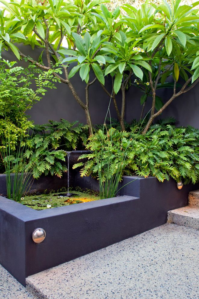 National Tropical Botanical Garden for a Tropical Landscape with a Modern and Melville Courtyards by Cultivart Landscape Design
