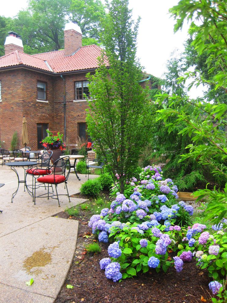 Natureworks for a Traditional Landscape with a Roses and Historical Indianapolis Residence by Surroundings by Natureworks
