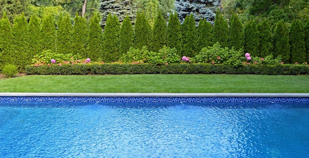 Northport Water for a Modern Pool with a Swimming Pool and Traditional Elegance in Northport, Ny by Above All Masonry Design, Inc