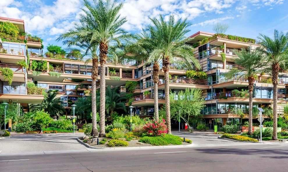 Optima Scottsdale for a Contemporary Exterior with a Condo and Redesign (Before and After) Luxury High Rise, Optima 7161/7002 by Lydia Sweetland Thinkspace Design and Home Staging
