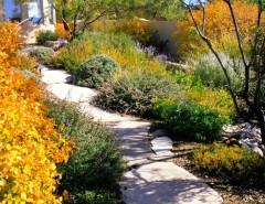 Pf Changs Albuquerque for a Traditional Landscape with a Xeriscape and Waterwise Landscapes by Waterwise Landscapes Incorporated