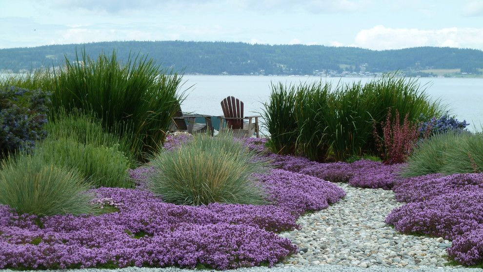 Pine Bluff Sand and Gravel for a Beach Style Landscape with a Purple Flowers and Coan Waterfront Landscape, Camano Island, Wa by Lankford Associates Landscape Architects