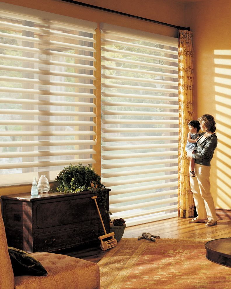 Pirouettes for a Transitional Living Room with a Hunter Douglas and Hunter Douglas Pirouette by Tri City Blinds