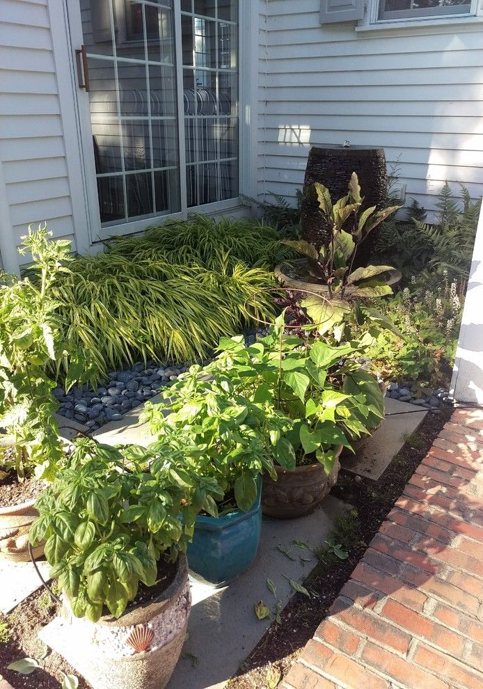 Planting Basil for a Traditional Landscape with a Shade Gardening and Osterville Containers 2016 by Juliagarden Design Ltd.