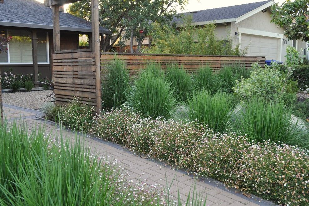 Proflower for a Asian Landscape with a Natural and Gravel Courtyard by Huettl Landscape Architecture