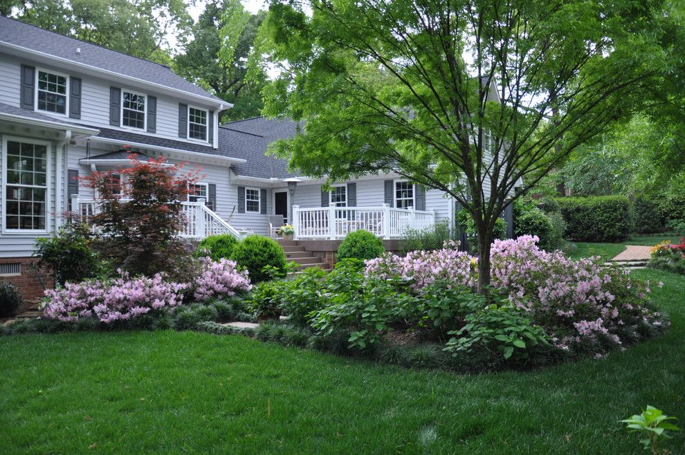 Proflower for a Traditional Landscape with a Deck and Rejuvenated Backyard by the Collins Group/jdp Design