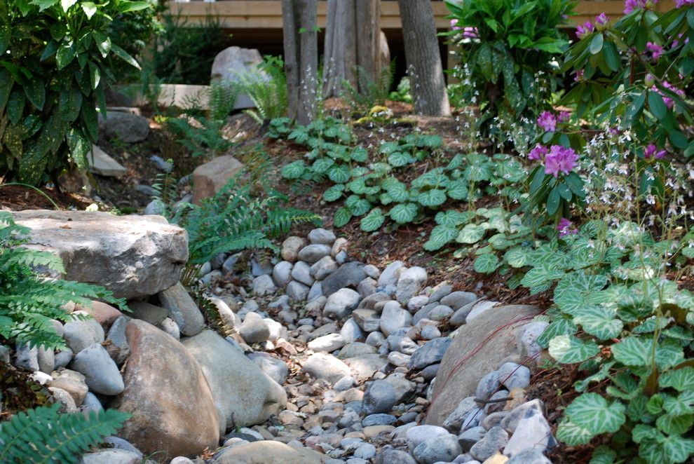 Providence at Brier Creek for a Asian Landscape with a Woodland Garden and Asian Inspired Woodland Garden by Jay Sifford Garden Design