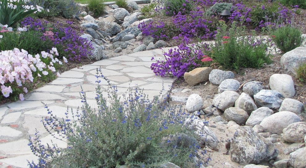 Providence at Brier Creek for a Mediterranean Landscape with a Habitat and Dry Stream Bed Directs Drainage During Rainy Season by Jean Marsh Design