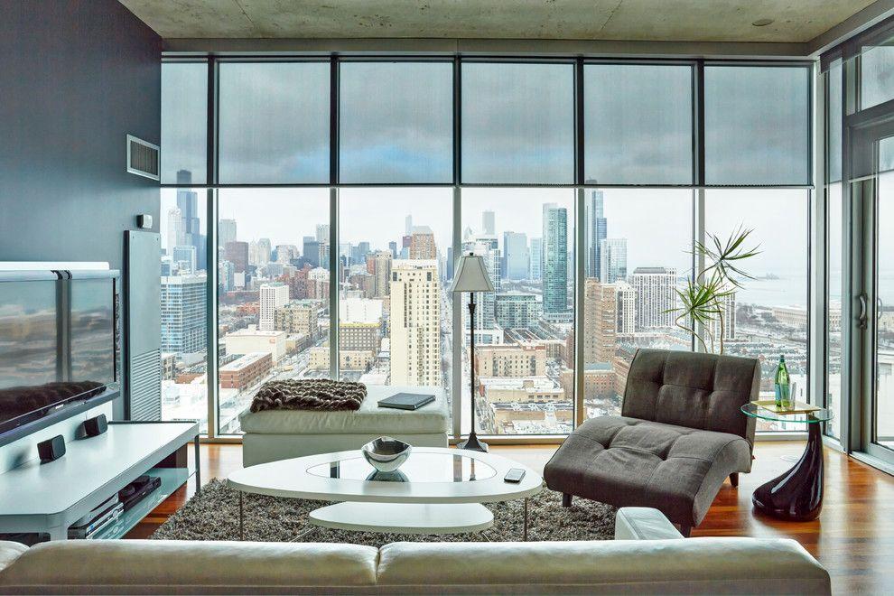 Rta Chicago for a Contemporary Living Room with a Contemporary and Somfy Chicago by Somfy Systems