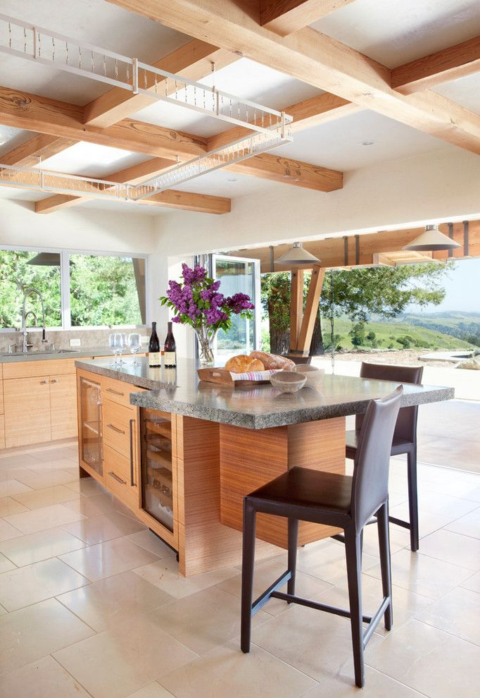 San Francisco Exploratorium for a Contemporary Kitchen with a Contemporary and Orinda Residence by Applegate Tran Interiors