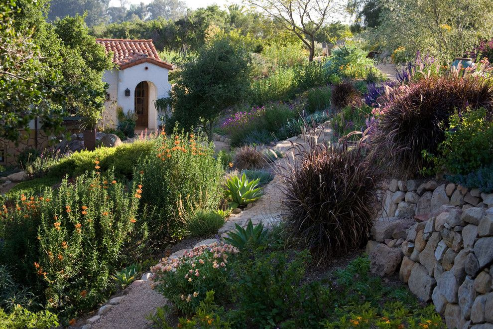 Santa Barbara Back Page for a Mediterranean Landscape with a Pea Gravel Path and Grace Design Associates by Margie Grace   Grace Design Associates