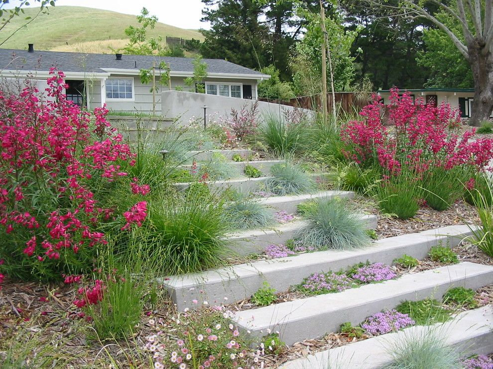 Santa Barbara Presidio for a Contemporary Landscape with a Entry and Concrete Garden Steps by Huettl Landscape Architecture