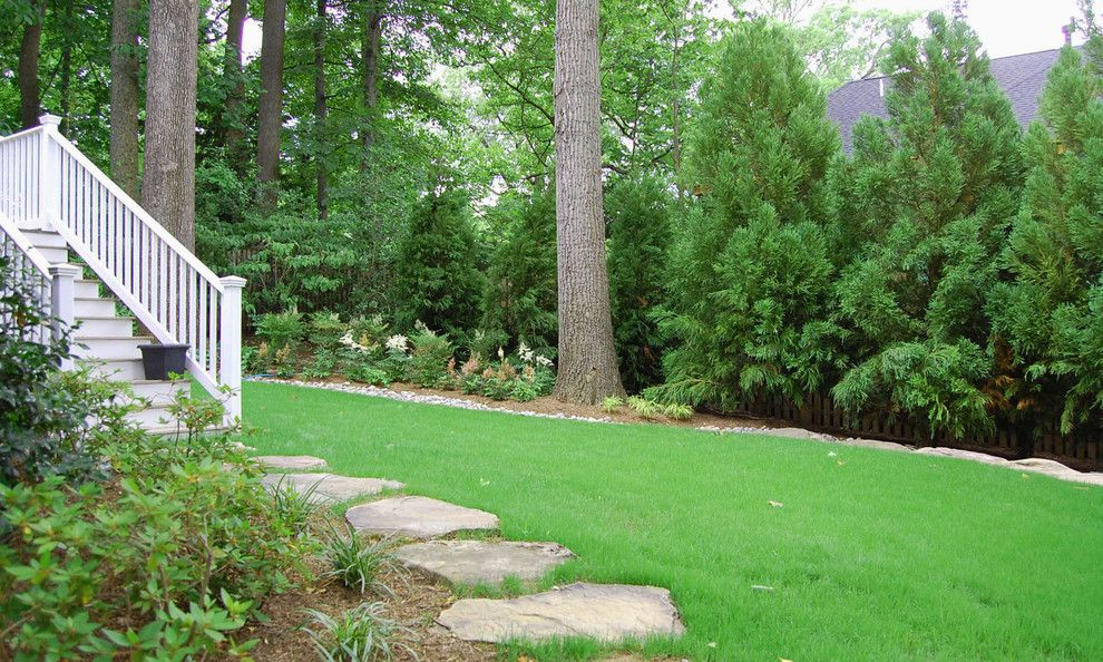 Scotts Lawn for a Traditional Landscape with a Natural and Bethesda Residence by Molly Scott Exteriors, Llc