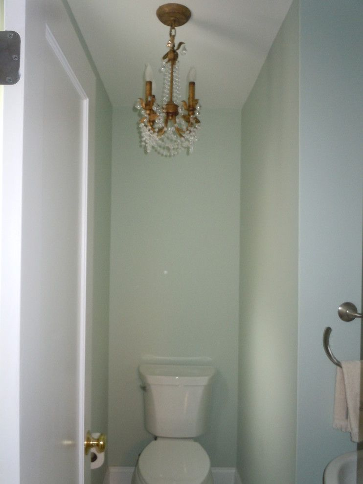 Shoshana for a Transitional Powder Room with a Oval Medicine Cabinet and Bathrooms by Shoshana Halpert Designs