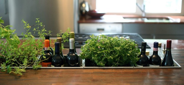 Siesta4rent for a Contemporary Kitchen with a Potted Plants and Planter Detail by Bonfigli Design