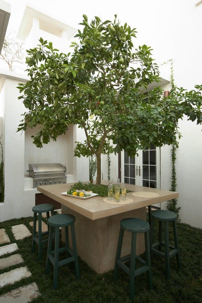 Sloat Garden Center for a Mediterranean Patio with a Climbing Plants and Alys Beach Residence by Artisan of Seagrove