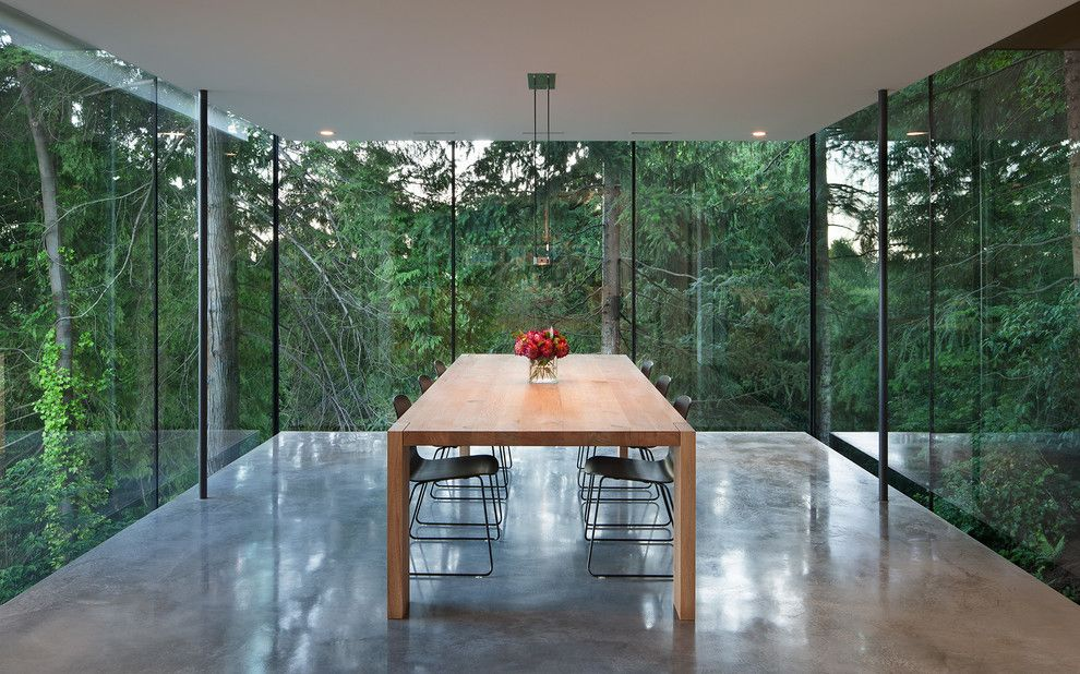Spectra Contract Flooring for a Modern Dining Room with a Glass Walls and Russet by Splyce Design