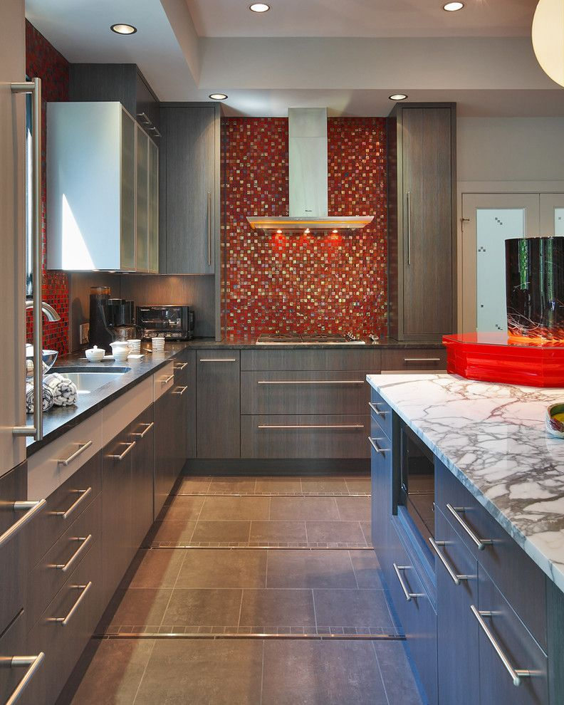 Summit Appliance for a Contemporary Kitchen with a Red Accents and Contemporary Colorful Kitchen by Jack Rosen Custom Kitchens
