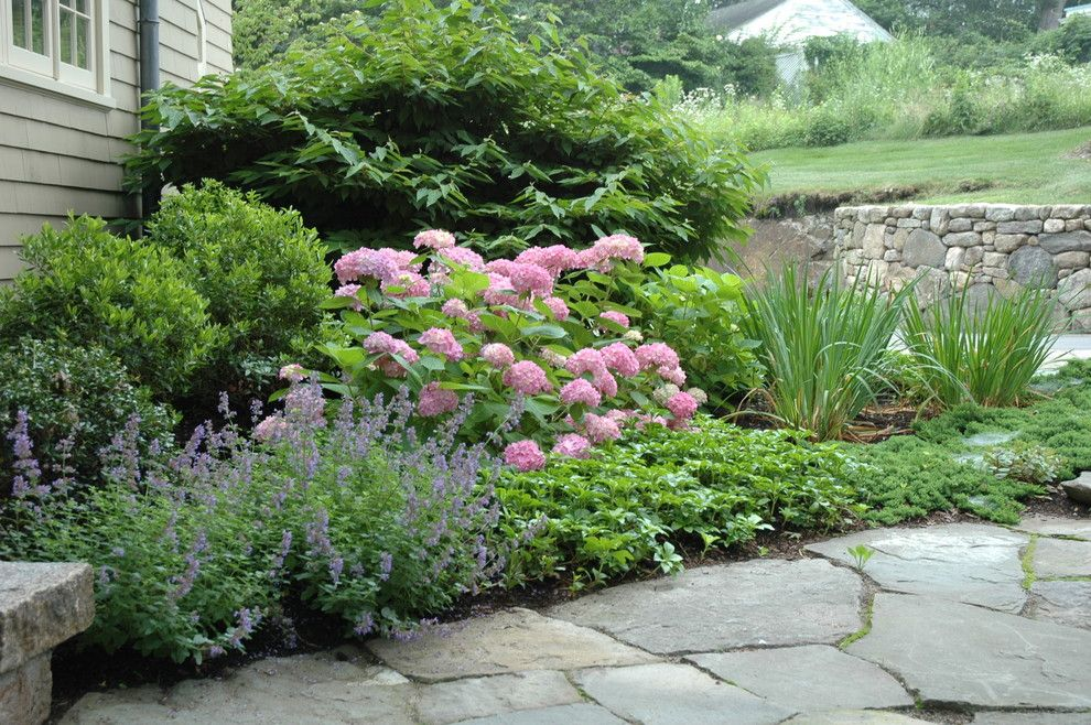 Sweet Ga Juke Joint for a Traditional Landscape with a Traditional and Entry Garden by Timothy Lee Landscape Design