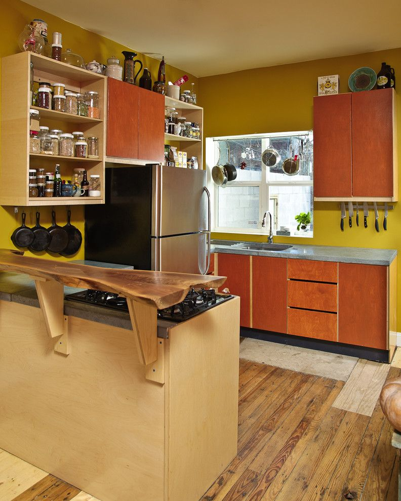 The Iron Giant Cast for a Eclectic Kitchen with a Open Shelves and Martha Street by Craftwork