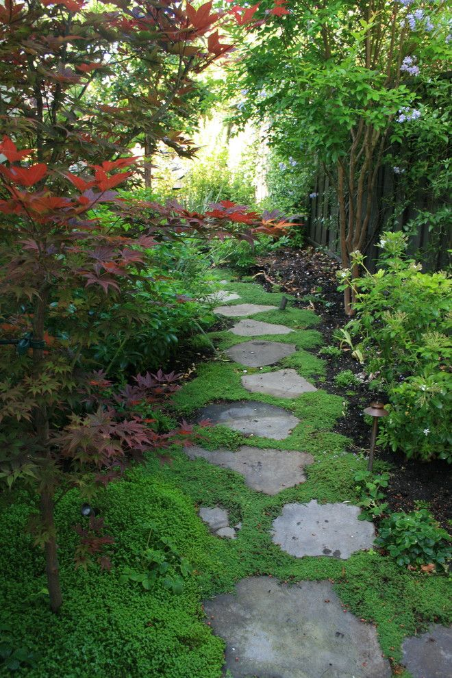 The Seasons of Cherry Creek for a Traditional Landscape with a Path and Renovation in Palo Alto by Mozaic Landscapes